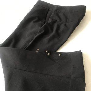 Gorgeous Zara pants